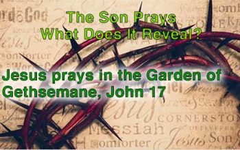 The Son Prays – What Does It Reveal?
